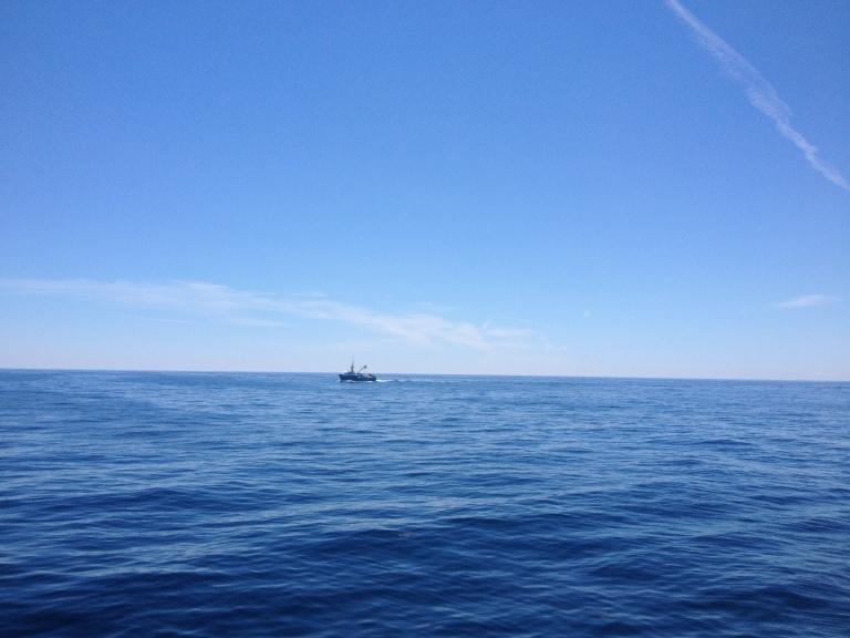 """Schwertfischtrawler (Man denke an """"Der Sturm"""") vor der Küste von Maine"""