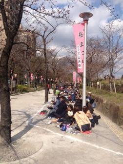 Sakura Picknich on th Arakawa River Bank