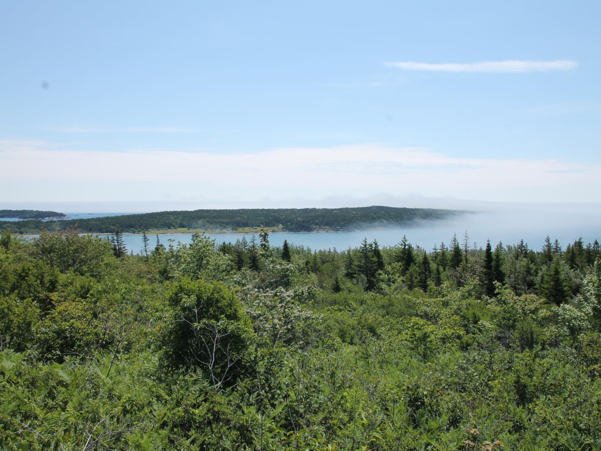 Blick vom Pidgeon Hill