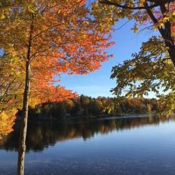 Spectacle Pond, ME, Okt. 2018