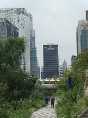 Natur und Architektur am Cheonggyecheon in Seoul
