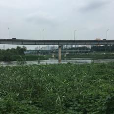 Mündung des Cheonggyecheon in den Hangnang in Seoul